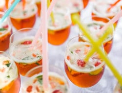 Gin Holiday Cocktails