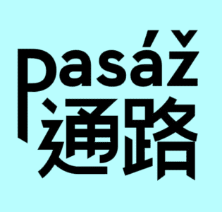 The Passage (Pasaz)